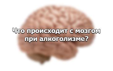 Разрушение мозга при алкоголизме – что происходит с организмом алкоголика